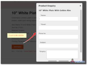 WooCommerce的商品详细信息页面询盘展示插件