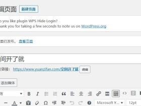 Wordpress文章的固定链接不能更改解决办法