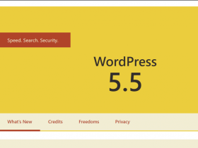 Wordpress5.5发布,官网仍然没开通与中国大陆的更新通道