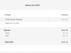 Godaddy提供给中国用户的服务越来越谜了:为什么我要欧元付款?