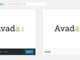 我认为AVADA的正版授权过程,存在比较明显的漏洞