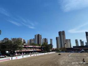 天星调良国际马术俱乐部,北京马圈重要交流地